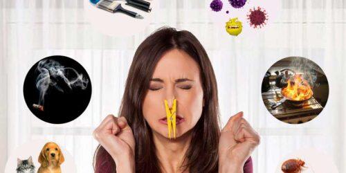 дезинфекция и удаление запаха озоном