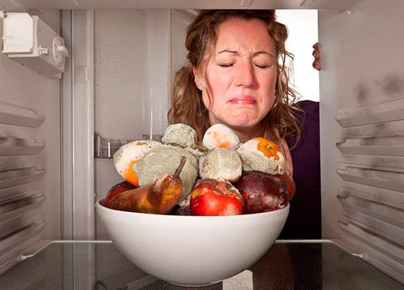 Озонирование холодильника