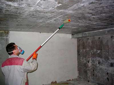 обработка бетона от плесени и грибка