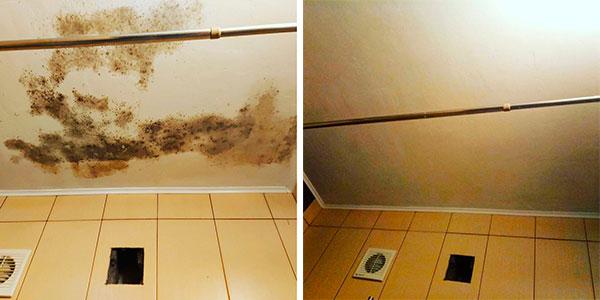 Обработка потолка от плесени