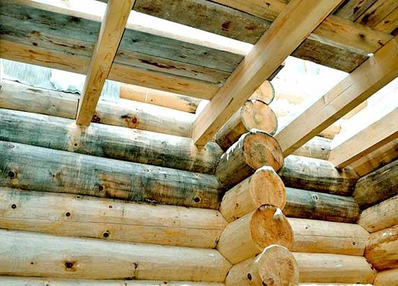 удаление плесени с древесины